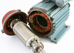 Induction motor rotor and stator
